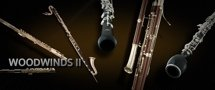 Vienna Symphonic Library Woodwinds II - Full Library