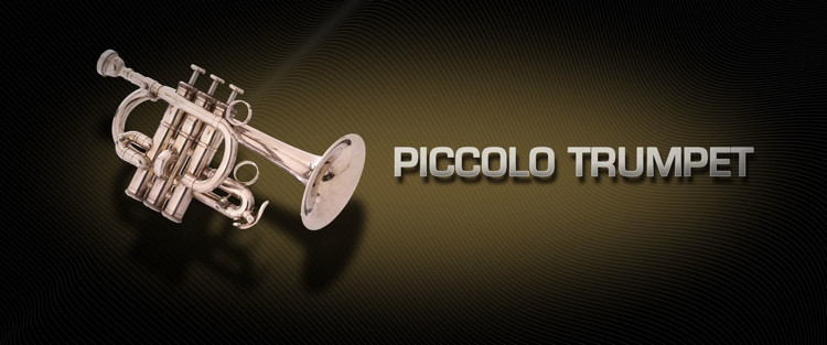 Vienna Symphonic Library Piccolo Trumpet - Standard Library image 1