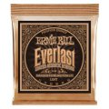 Ernie Ball 2548 Everlast Coated Phosphor Bronze Light Acoustic Strings