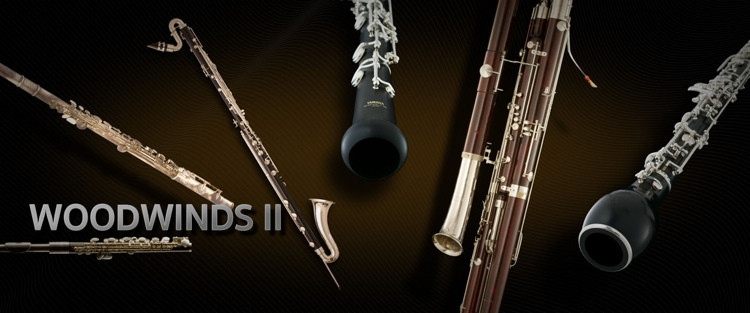 Vienna Symphonic Library Woodwinds II - Full Library image 1