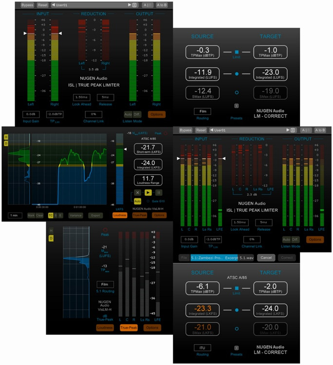 NUGEN Audio Loudness Toolkit Plug-in Bundle image 1