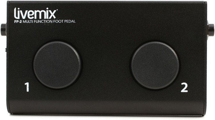 Digital Audio Labs FP-2 Foot Pedal for CS-SOLO and CS-DUO image 1