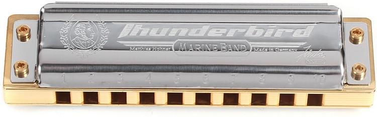 Hohner Thunderbird - Key of Low E image 1