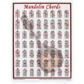 Walrus Productions Mini Laminated Chart, Mandolin