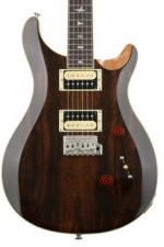 PRS SE Custom 24 Sweetwater Exclusive - Natural Rosewood