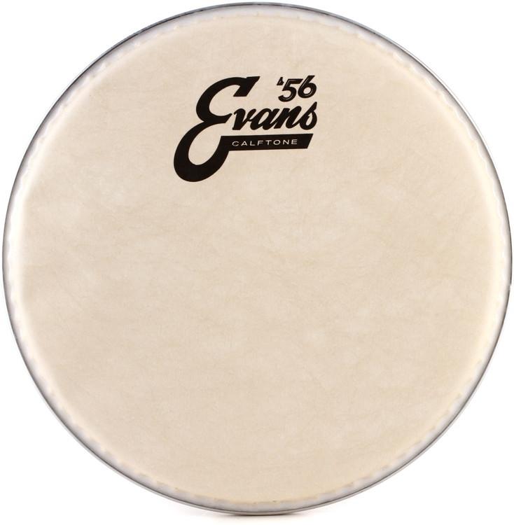 Evans Calftone Drumhead - 8
