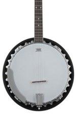 Washburn B9 5-string Banjo - Natural