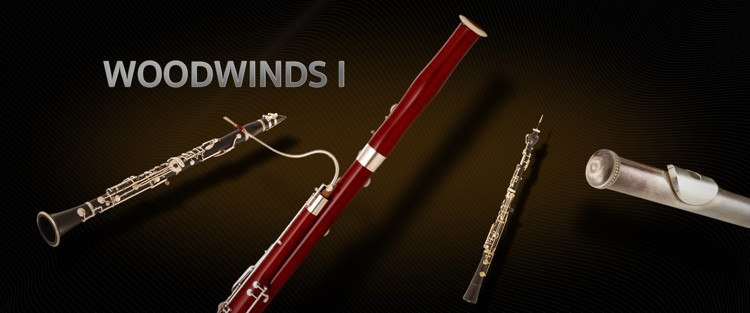 Vienna Symphonic Library Woodwinds I - Full Library image 1