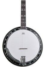 Washburn B16 5 String Banjo - Sunburst
