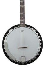 Washburn B10 5-string Banjo
