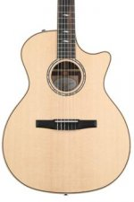 Taylor 814ce-N - Rosewood back and sides