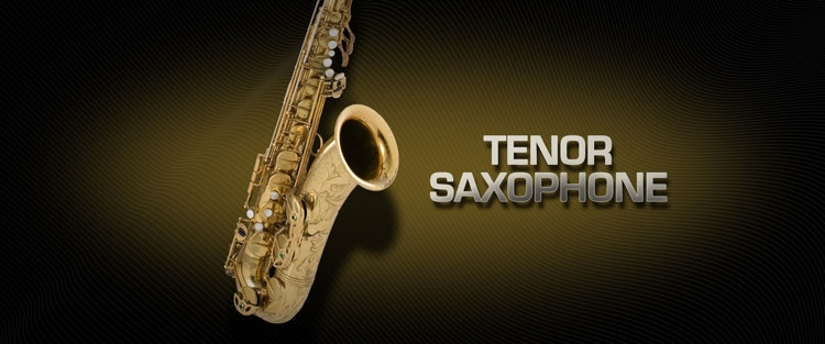 Vienna Symphonic Library Tenor Saxophone - Full Library image 1