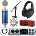 Blue Microphones Bluebird SL Recording Package