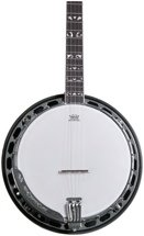 Washburn B16 5 String Banjo - Sunburst