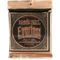 Ernie Ball 2546 Everlast Coated Phosphor Bronze Medium Light Acoustic Strings