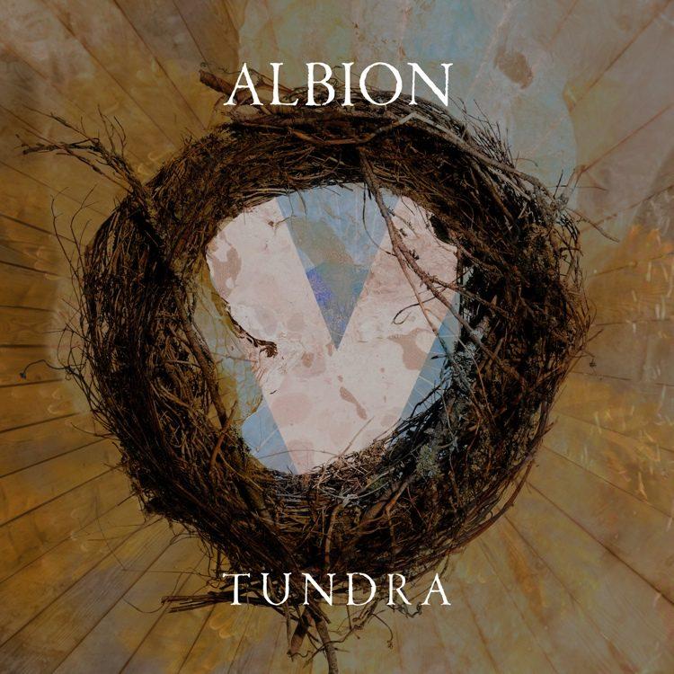 Albion V - Tundra