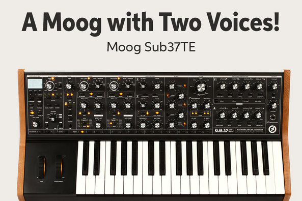 A Moog with Two Voices! Moog Sub37TE