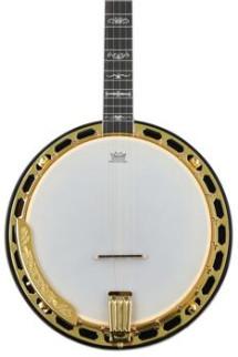 Washburn B17 5 String Banjo - Sunburst