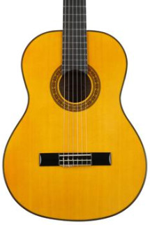 Washburn C40 - Natural