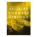 Spitfire Audio Chamber StringsChamber Strings