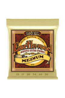 Ernie Ball PO2002 Earthwood 80/20 Bronze Medium Acoustic Strings