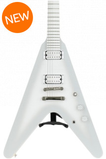 Epiphone Brendon Small