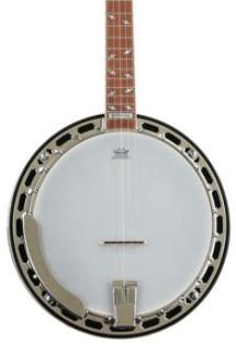 Epiphone Mayfair Banjo - Red Brown Mahogany