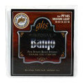 GHS PF145 Stainless Steel 5-String Banjo Strings - .010-.022