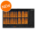iZotope RX 6 Advanced Audio Editor - Upgrade from RX Plug-in Pack