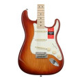 Fender American Professional Stratocaster - Sienna Sunburst with Maple FingerboardAmerican Professional Stratocaster - Sienna Sunburst with Maple Fingerboard