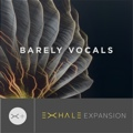 Output Barely Vocals Exhale Expansion
