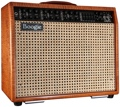 "Mesa/Boogie Mark V 90-watt 1x12"" Tube Combo - Private Reserve Amber Maple"
