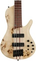 Ibanez SRSC805 Cerro Single Cut - Natural Flat