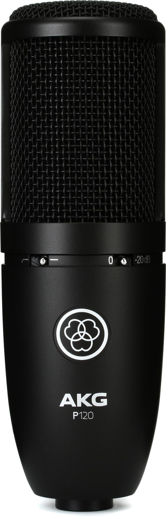 3. AKG P120