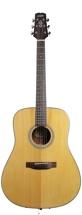 Wechter Guitars DN-8118 Mahogany Dreadnought