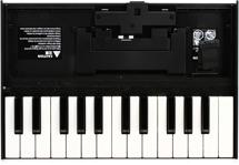 Roland Boutique Series K-25m Limited-edition Keyboard Unit