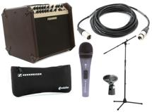 Fishman LoudBox Artist Songwriter Package with Mic, Stand, Cable