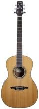 Wechter Guitars Nashville Special Elite - Cedar w/Fishman PreSys 501