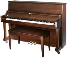 Yamaha P22 Acoustic Piano - Satin American Walnut