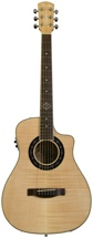 Fender T-Bucket 200-CE Flame Maple - Natural