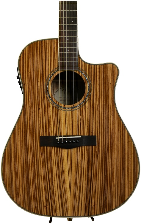 Fender CD-220CE All Zebrano - Zebrano Natural Gloss image 1