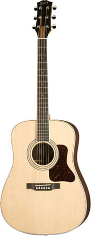 Gibson Acoustic Songmaker Series DSR image 1