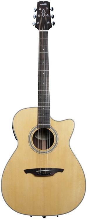 Wechter Guitars  - LR Baggs Electronics image 1