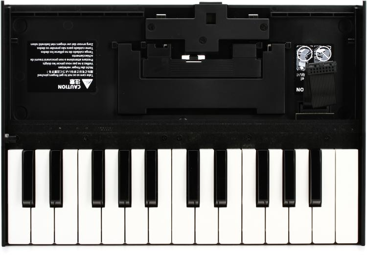 Roland Boutique Series K-25m Limited-edition Keyboard Unit image 1