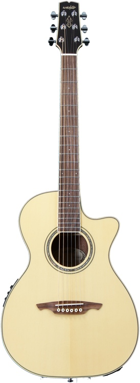 Wechter Guitars Half-Nashville-tuned Special Elite Cutaway - Spruce C/A with Fishman PreSys+ image 1