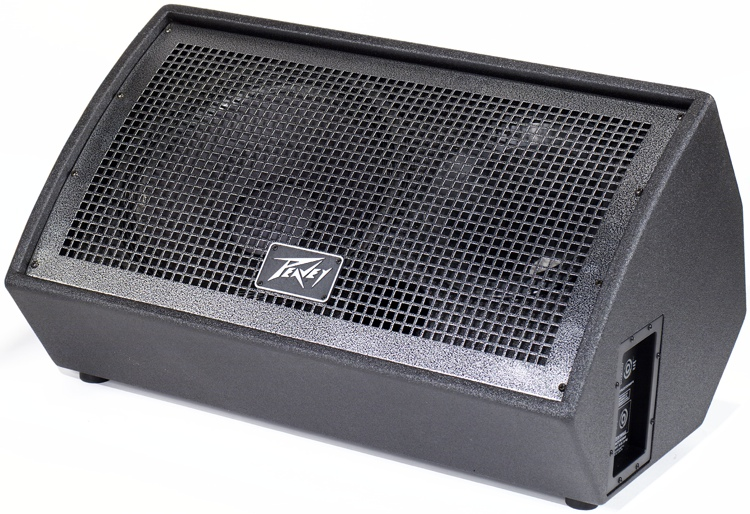 Peavey QW Passive Monitor (Right) image 1
