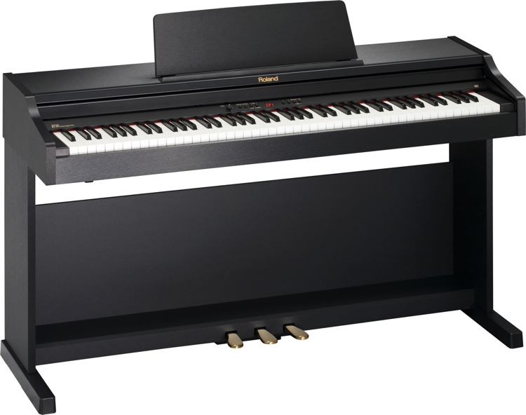 Roland RP-301 - Satin Black image 1