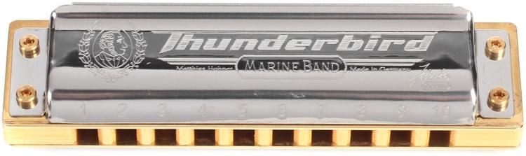 Hohner Thunderbird - Key of Low D image 1