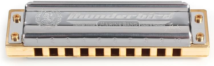 Hohner Thunderbird - Key of Low Low F image 1