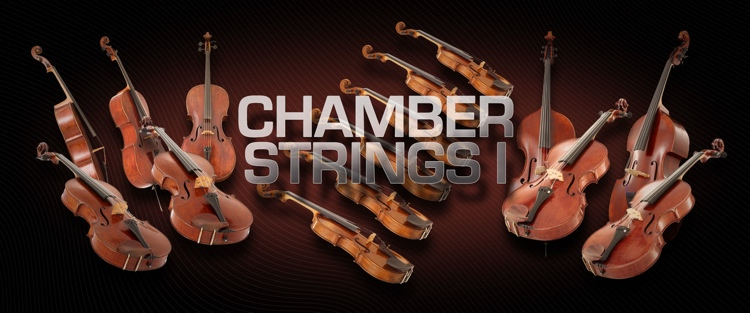 Vienna Symphonic Library Chamber Strings I - Full Library image 1